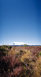 Mt Ruapehu & Tongariro National Park 