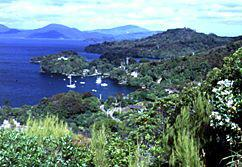 Half Moon Bay - Stewart Island